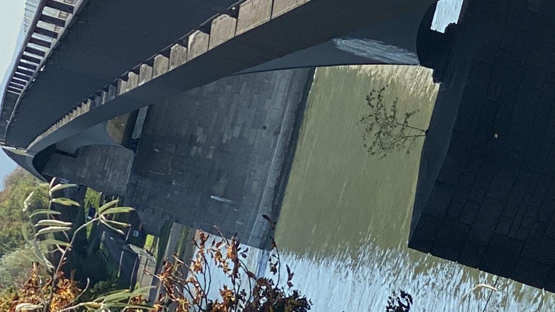 Unter der Brücke 14.10.2019